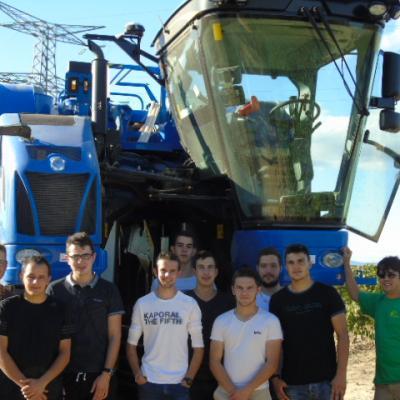 Machine a vendanger bts tsma5