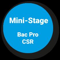 Mini-Stage Bac Pro Commercialisation et Service en Restauration