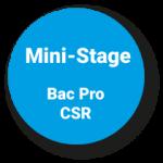Pastille mini stages bac pro csr