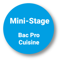 Mini-Stage Bac Pro Cuisine