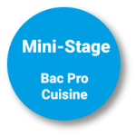 Pastille mini stages bac pro cuisine