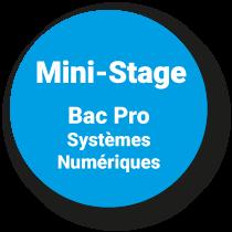 Mini-Stage Bac Pro SN*