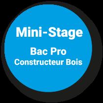 Mini-Stage Bac Pro TCB*