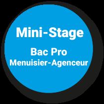 Mini-Stage Bac Pro TMA*
