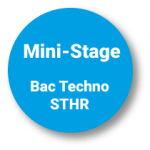 Pastille mini stages bac techno sthr