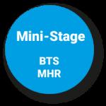 Pastille mini stages bts mhr