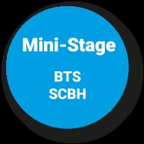 Mini-Stage Mise à Niveau
