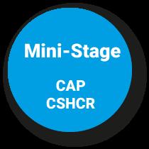 Mini-Stage CAP Commercialisation et Services en Hôtel-Café-Restaurant
