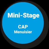 Mini-Stage CAP Menuisier*