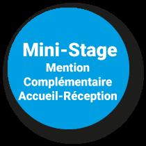 Mini-Stage Mention Complémentaire Accueil Réception