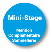 Mini-Stage Mention Complémentaire Sommellerie