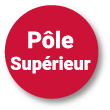 Pastille pole superieur