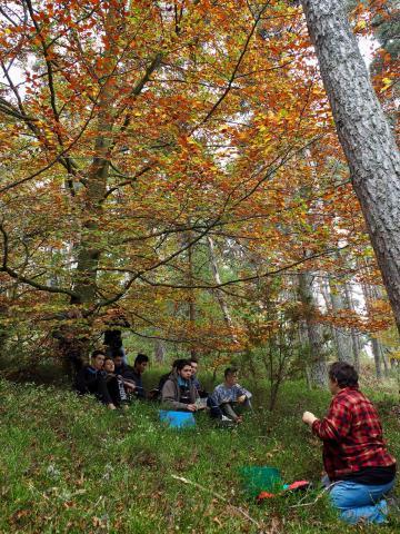 Sortie pédagogique en forêt des lycéens de la section bois