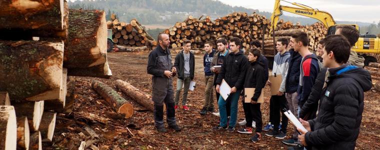 Visite de la scierie Buffière à Saint-Chély d'Apcher
